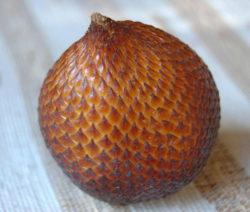 Salacca Zalacca Frucht Salak Nahaufnahme