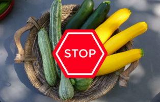 Die Zucchini Und Das Tödliche Cucurbitacin