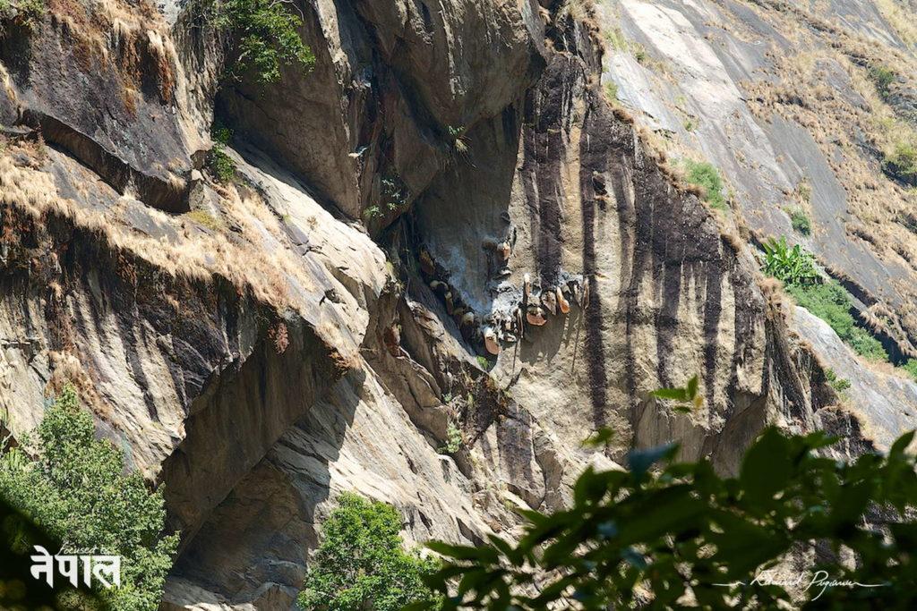 himalaya honig an Felswand