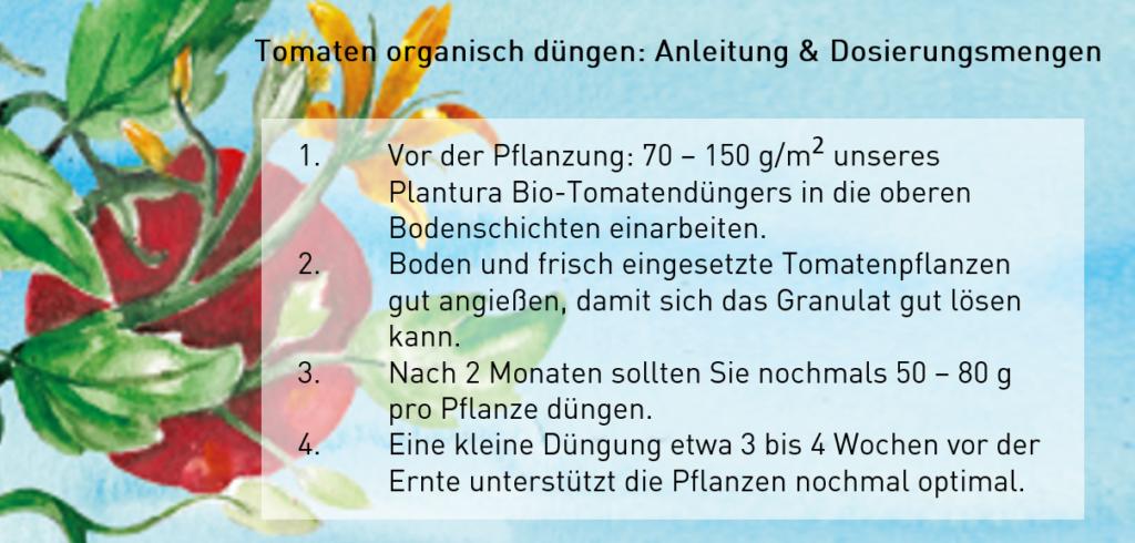 Anleitung Tomaten düngen