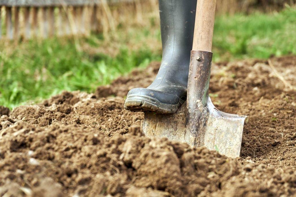 Boden wird mit Spaten umgegraben
