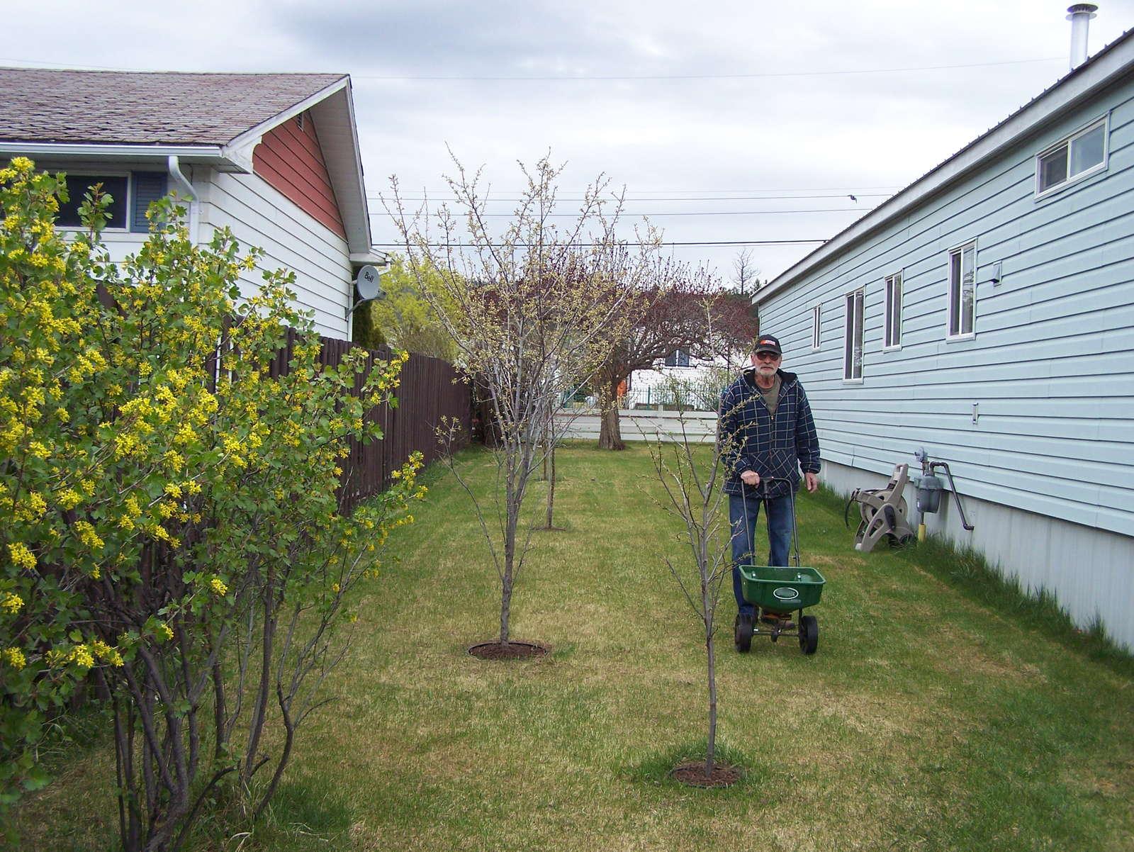 Rasen Pflegen Im Frühjahr, Sommer & Herbst: Tipps Vom