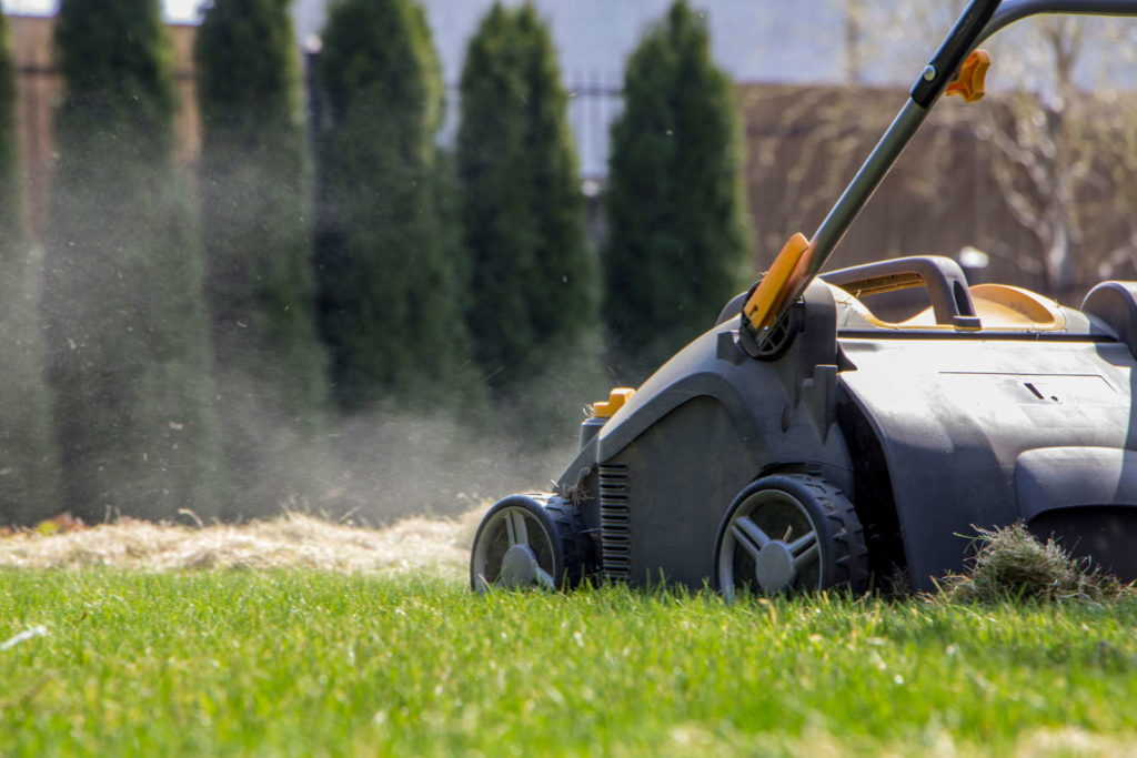 Rasen vertikutieren gegen Moos