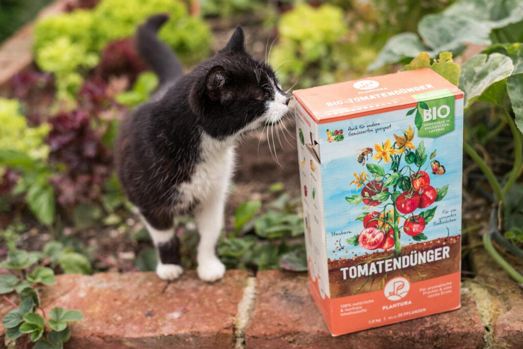 Katze mit Plantura Bio-Tomatendünger