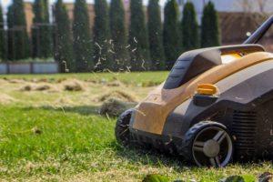 Rasen Im Frühjahr Vertikutiert