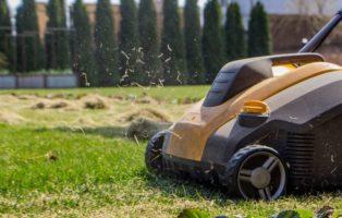 Rasen Vertikutieren: Warum, Wann & Wie Oft?