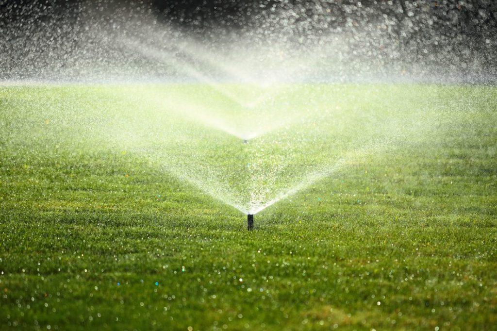 Rasen im Sommer mit Wassersprenkler gewässert