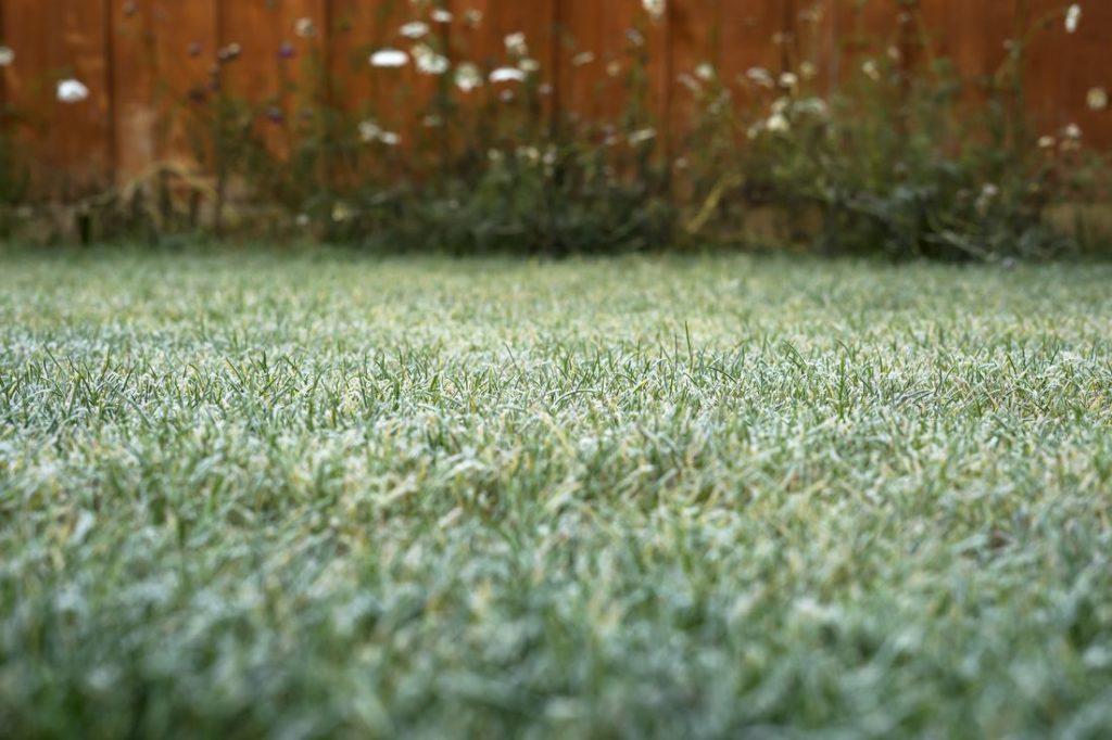 Gefrorener Rasen im Winter