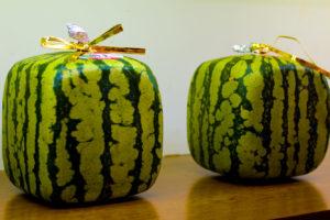 Eckige Quadratische Wassermelonen
