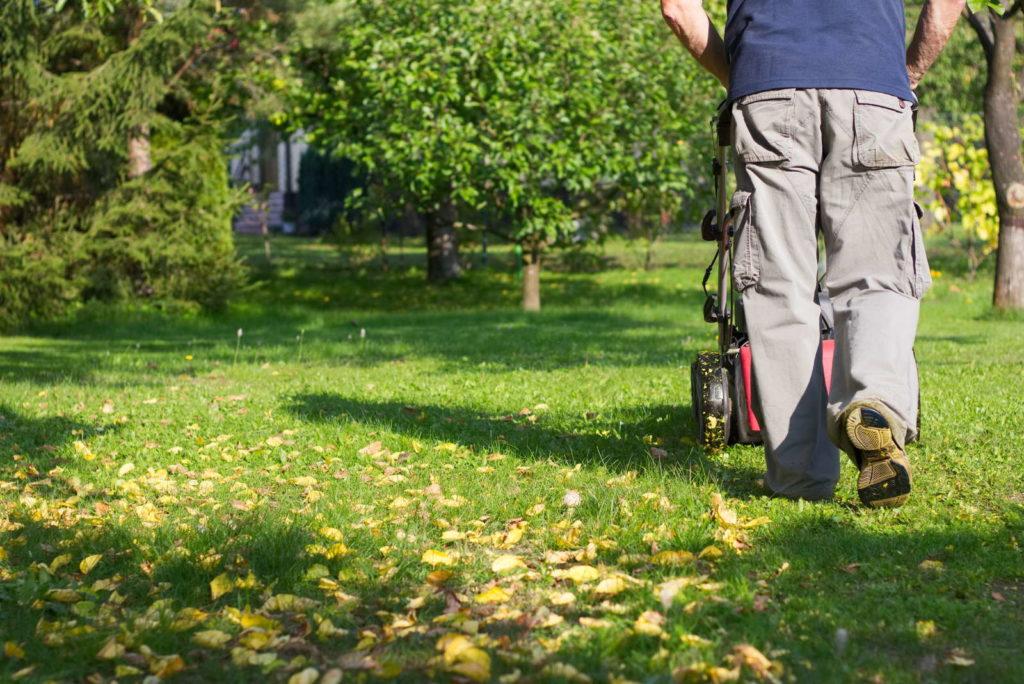 Rasen mähen im Herbst
