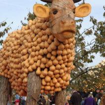 Kuh Aus Kürbissen Gestaltet