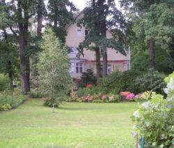 Rasen Villa Mit Garten Mit Bäumen Und Blumenbeet