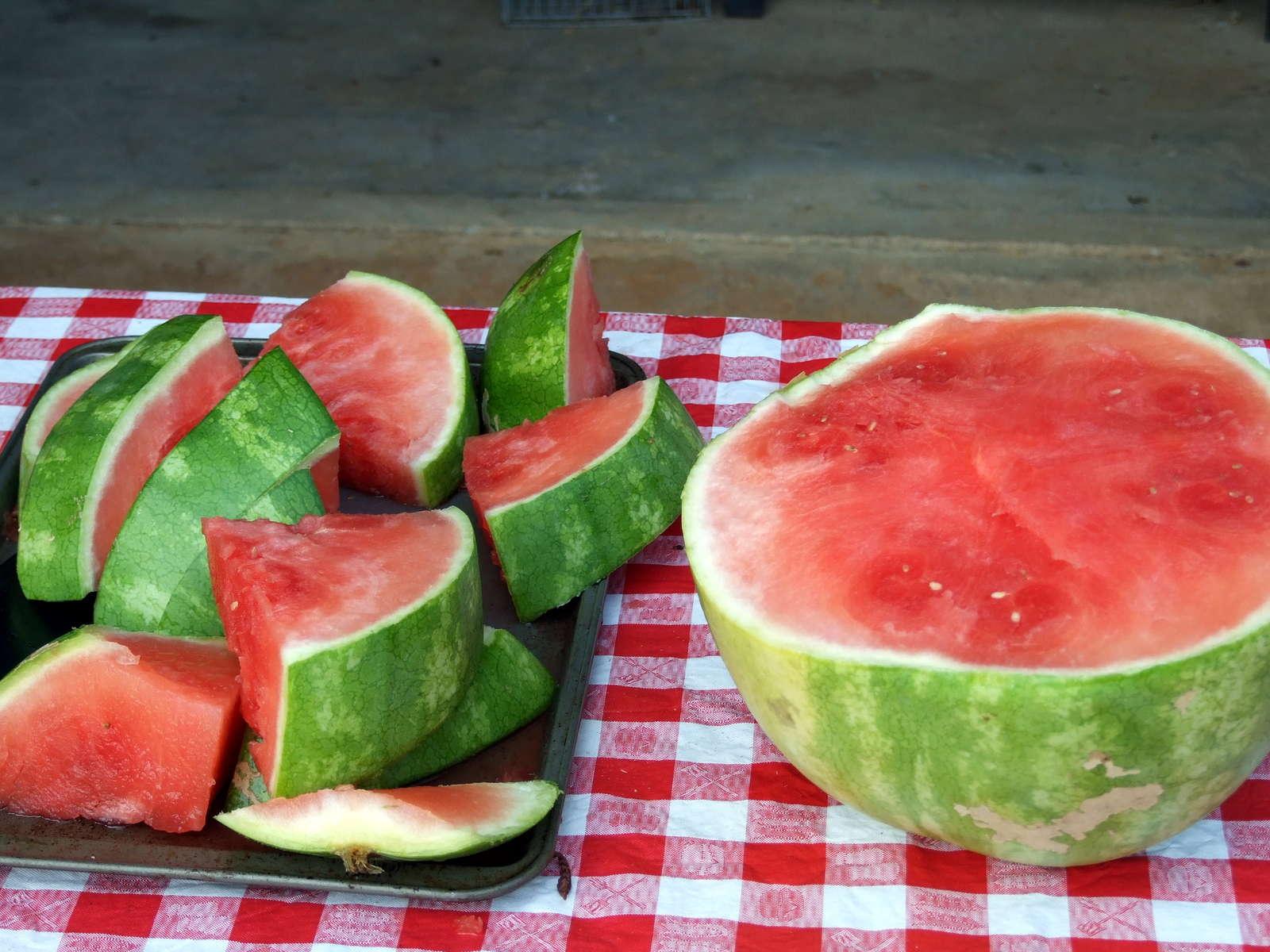wassermelonen slicer melonen kinderleicht aufschneiden plantura. Black Bedroom Furniture Sets. Home Design Ideas