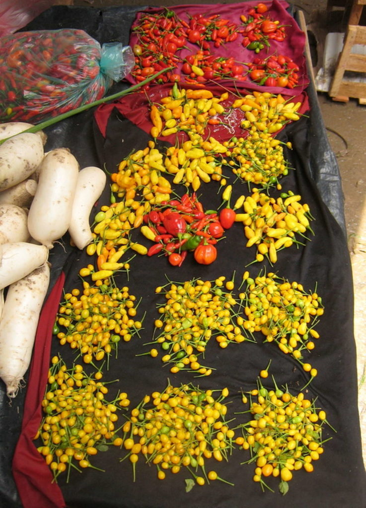 teuerste Chili Aji Charapita mit anderen Chilisorten auf Markt