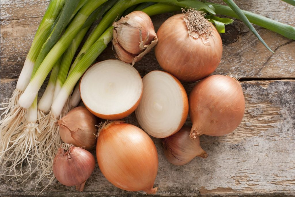 Zwiebeln und Frühlingszwiebeln im Vergleich