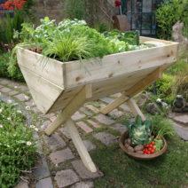 Hochbeet Aus Holz Mit Gemüse