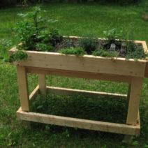 Kräuter Im Hochbeet Aus Holz Im Garten