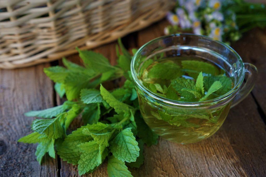 Zitronenmelisse Tee mit Blättern auf Holz mit Korb im Hintergrund