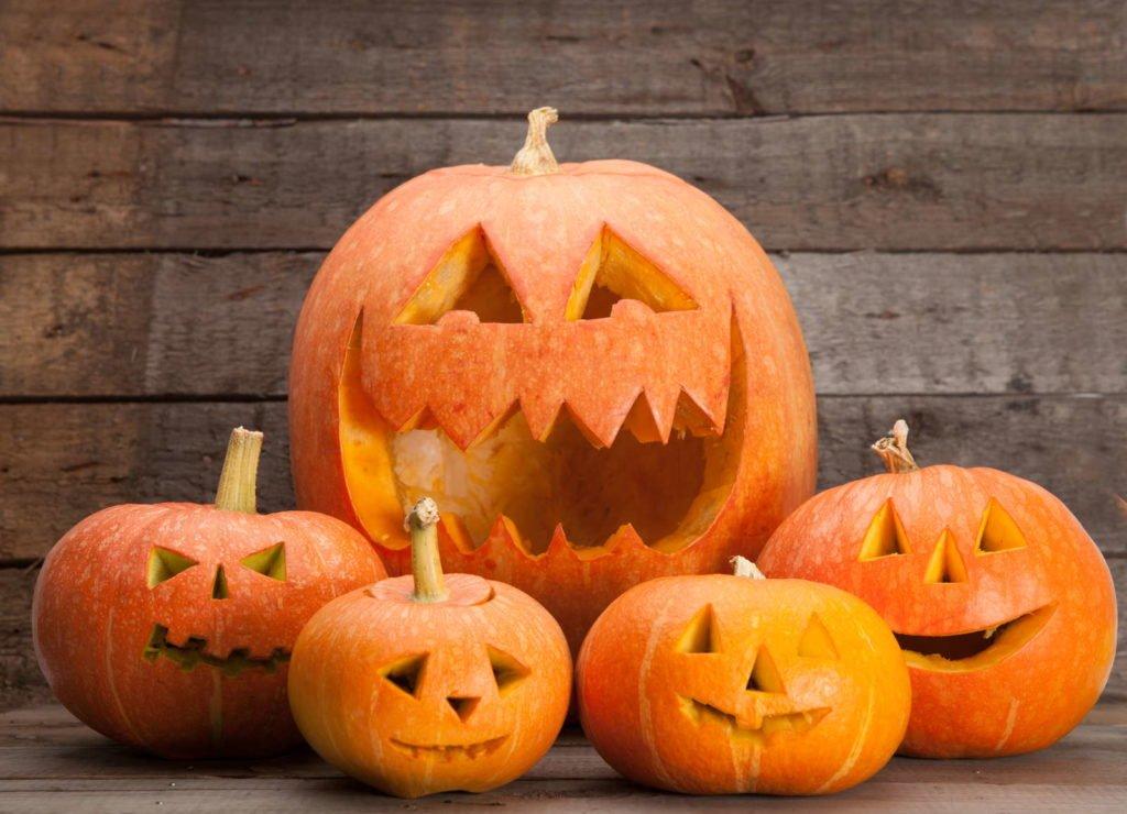 Fünf Halloween-Kürbisse auf Holzhintergrund