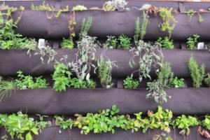 Vertikaler Garten Aus Stoff Mit Kräutern