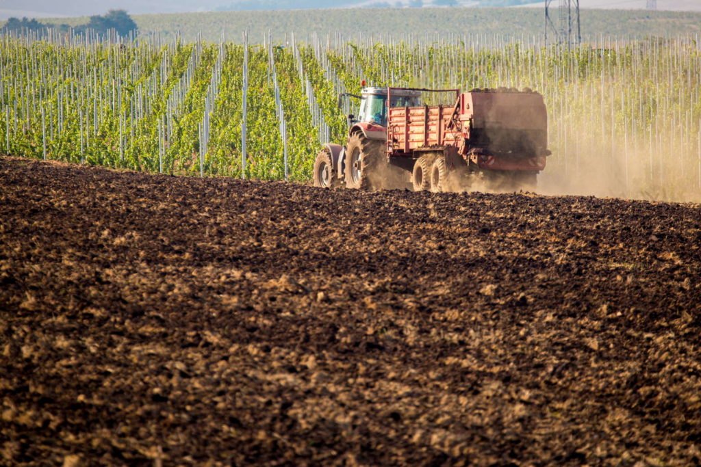 Traktor verteilt Dung auf dem Feld