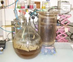 Urin Im Labor Untersuchen