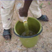 Urin Als Dünger Aus Flasche In Grünen Eimer Füllen