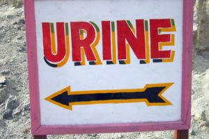 Urine Urin Schild