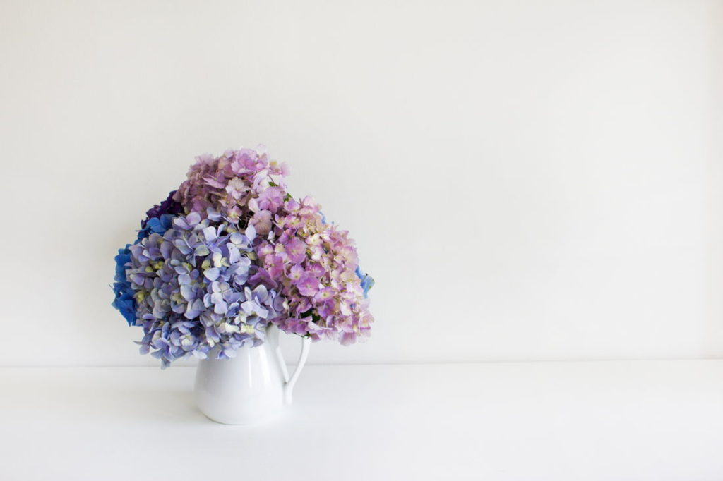 Beliebt Hortensien trocknen: Anleitung für getrocknete Hortensien als Deko WG62