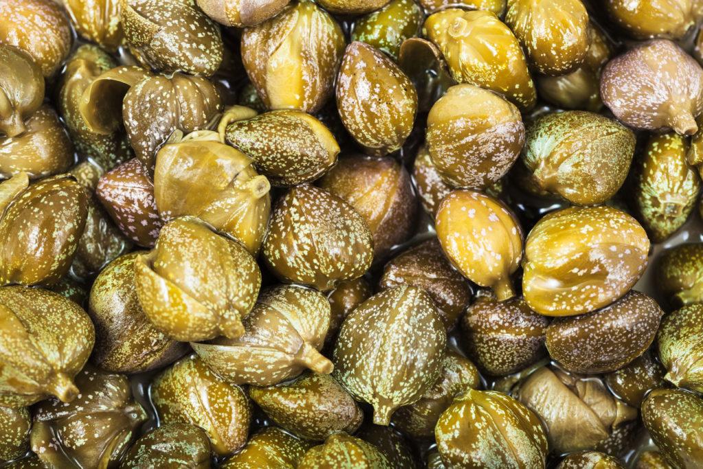 Früchte des Kapernstrauches
