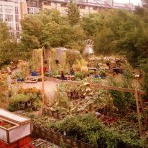 Berlin_Prinzessinnengarten