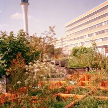 Nürnberg_Stadtgarten_1