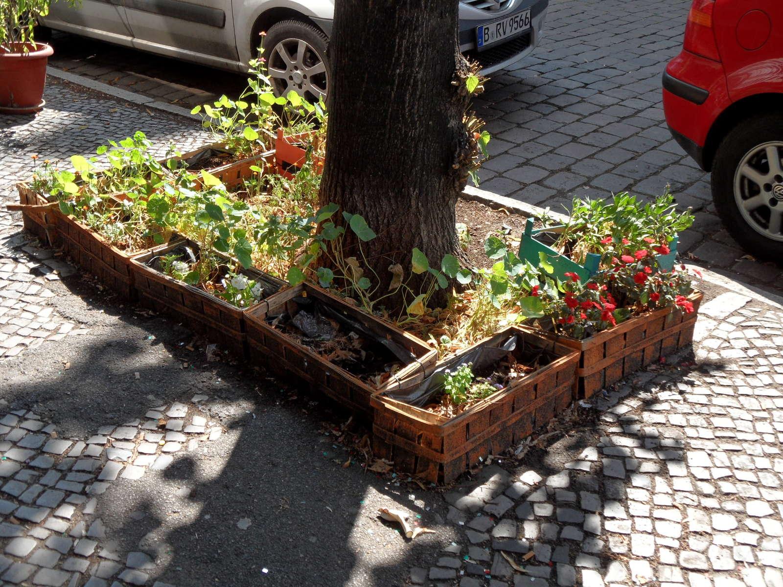 urbane landwirtschaft definition beispiele in deutschland plantura. Black Bedroom Furniture Sets. Home Design Ideas