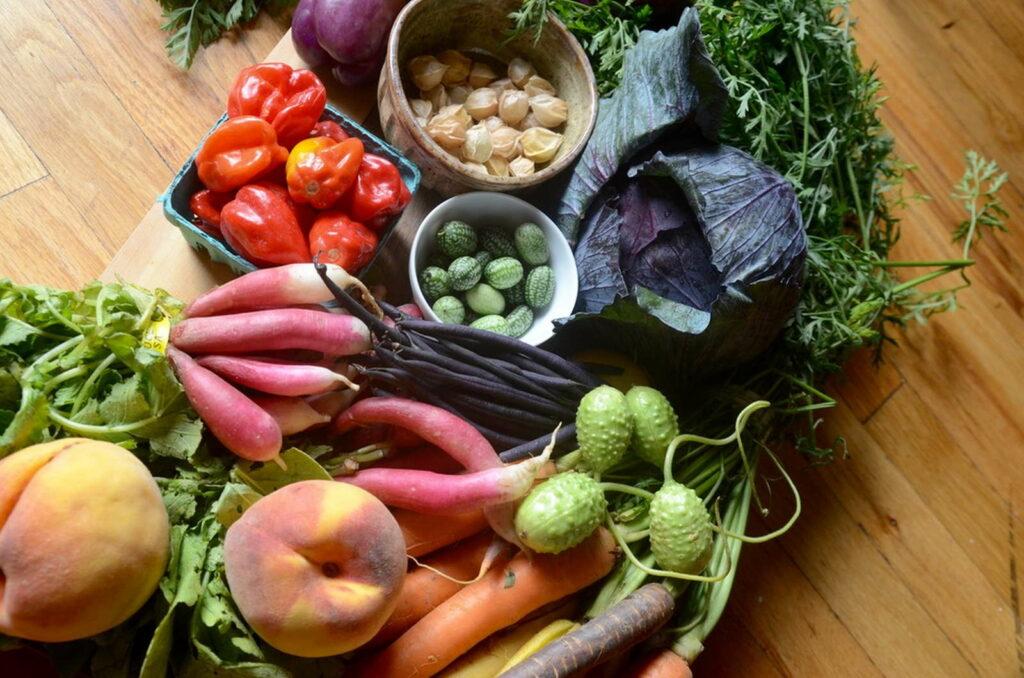 urban farming urbane landwirtschaft ernte