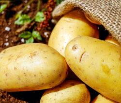 Gelbe Kartoffeln Im Sack Auf Der Erde