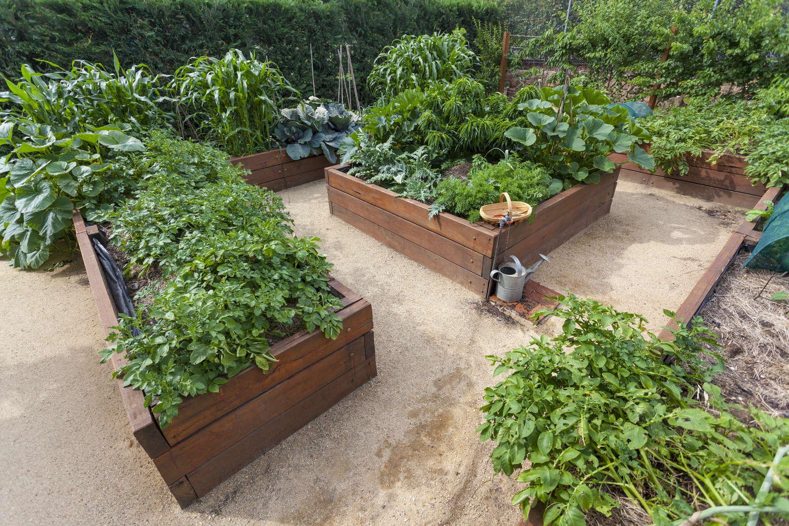 Gut bekannt Hochbeet selber bauen vs. Hochbeet kaufen - Plantura WO44