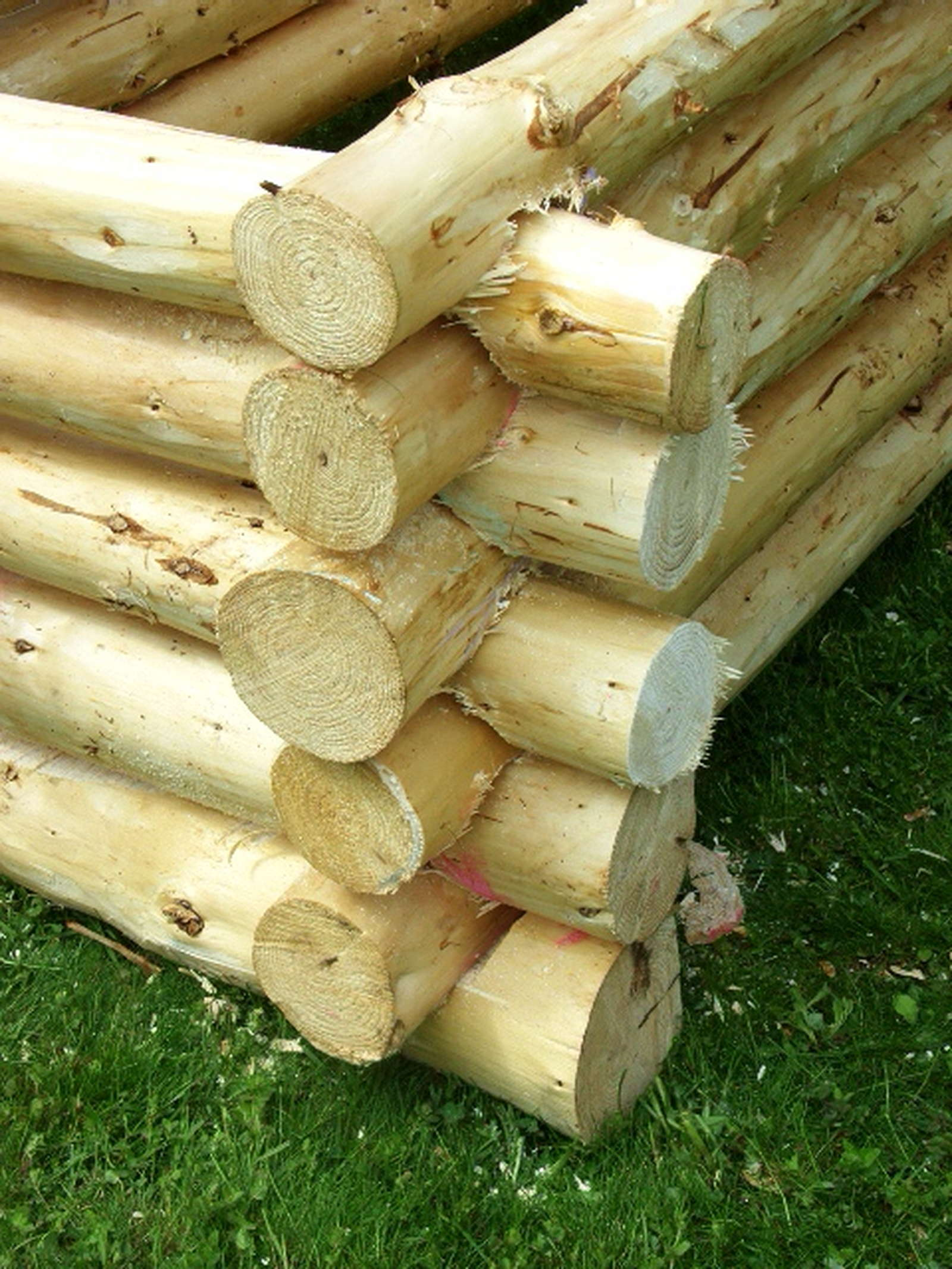 4 Moglichkeiten Ein Gemusebeet Schnell Und Einfach Zu Bauen Plantura