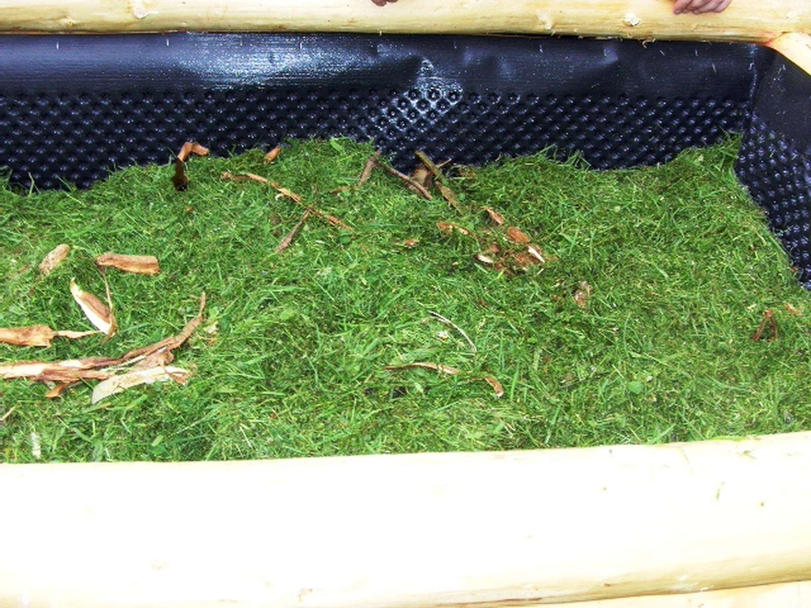 Befüllung Hochbeet hochbeet befüllen anleitung expertentipps plantura