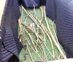 Hochbeet Bauen Äste Vlies Kaninchendraht