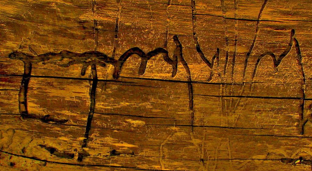 Holz Holzwurmbefall
