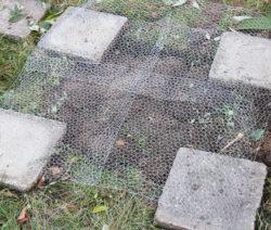 Kaninchendraht Auf Boden Mit Betonplatten