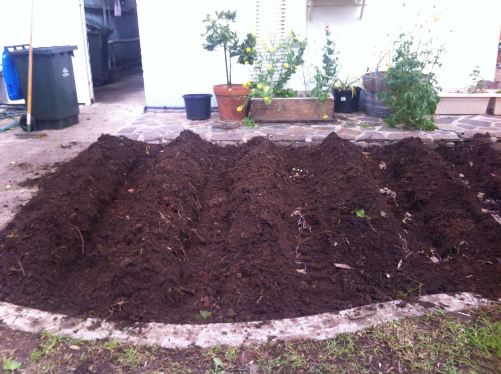 kartoffeln pflanzen erd pfel selber anbauen plantura. Black Bedroom Furniture Sets. Home Design Ideas