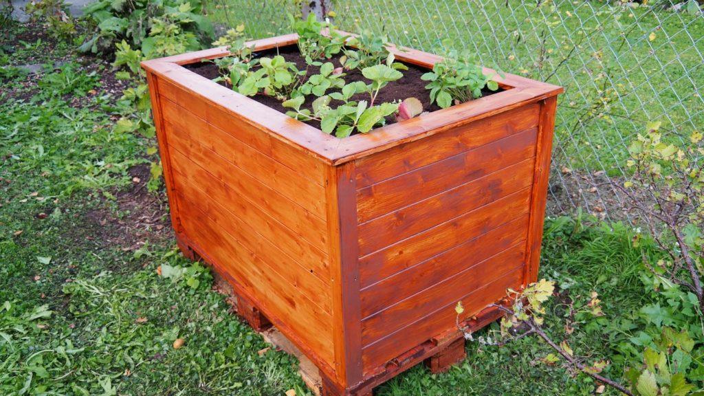 Hochbeet aus Holz bepflanzt im Garten