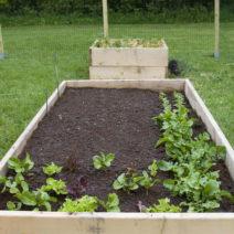 Neu Gebautes Hochbeet Au SHolz Im Garten