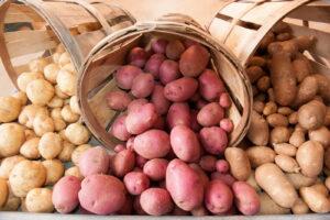 Verschiedene Kartoffeln Gelb Rot In Körben
