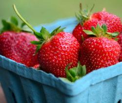 Erdbeeren In Blauer Schale