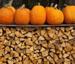Kürbisse Zum Trocknen Draußen Auf Holzscheitel