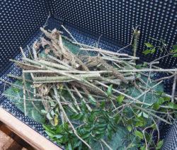 Hochbeet Befüllen Zweige Und Äste