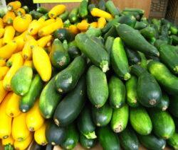 Zucchini Gelb Und Grün Ernte