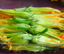 Zucchiniblüten Können Verzehrt Werden